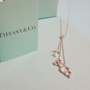 Gorgeous T & Co. Tiffany's Necklace